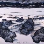 zeeolifanten